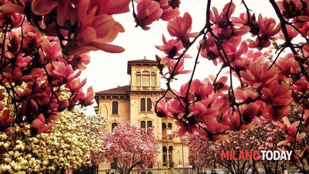 Quali sono i musei aperti a Pasqua e Pasquetta a Milano: orari e info sulle mostre