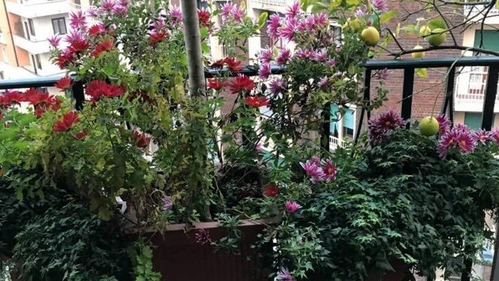Mobili per terrazzo milano mobili da balcone a roma for Mobili per terrazze